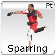 Sparring - Point