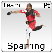 Sparring - Teams - Point