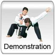 Demonstration - Long - Large Team